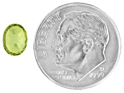 XTP070<br>Pallasitic Peridot .83ct 6.47x4.96x3.68mm Oval Comes With Gemstone Identification Report