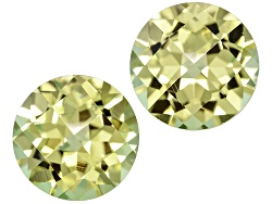 XTP767<br>Matched Pair Mali Grossularite-andradite Garnet 2.01ctw 6mm Round Checkerboard With Gemwor